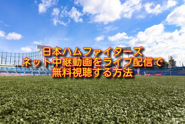 日本ハムファイターズのライブ中継の無料視聴方法