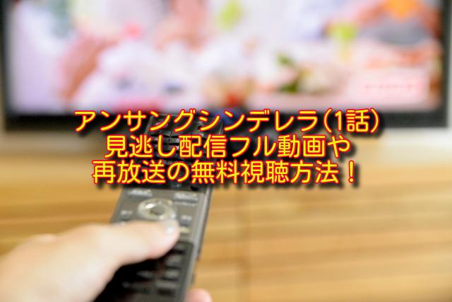 アンサングシンデレラ1話動画の無料視聴方法