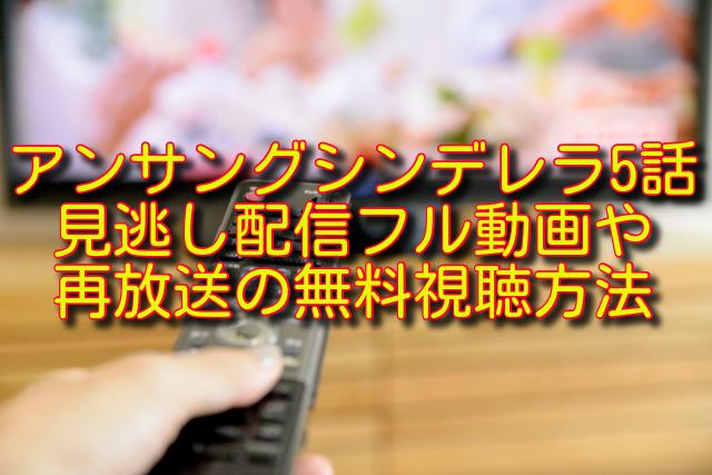 アンサングシンデレラ5話動画の無料視聴方法